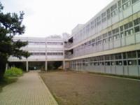 Nec_0244
